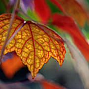 Mosaic Autumn Poster