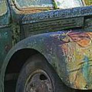 Moss Covered Truck Poster