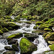 Mossy Creek Poster