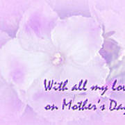 Mother's Day Greeting Card - African Violets Poster
