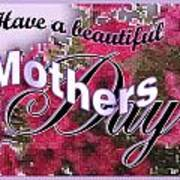 Mothers Day Pink Petunias Poster