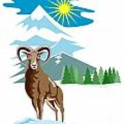 Mouflon Sheep Mountain Goat Poster by Aloysius Patrimonio