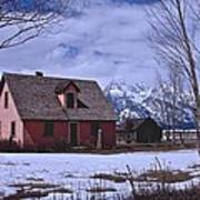 Moulton's Pink House On Mormon Row Poster
