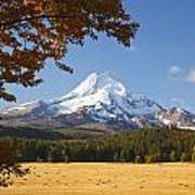 Mount Hood And Autumn Colours In Hood Poster