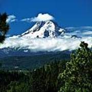 Mount Hood Framed By Trees, Oregon, Usa Poster