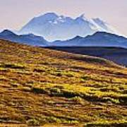 Mount Mckinley, Denali National Park Poster