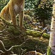 Mountain Lion With Fawn Poster by Anne Wertheim
