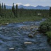 Mountain Stream With Cabin In Evergreen Poster