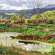 Mountain Valley Marsh - Hdr Poster