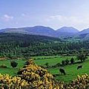 Mourne Mountains, Co Down, Ireland Poster