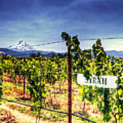 Mt Hood Winery Poster