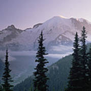 Mt Rainier As Seen At Sunrise Mt Poster