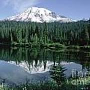 Mt. Ranier Reflection Poster