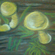 Mushrooms On A Hill Poster