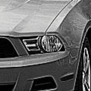 Mustang 002 Poster