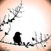 My Little Birdie Poster
