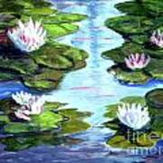 My Waterlilies Poster
