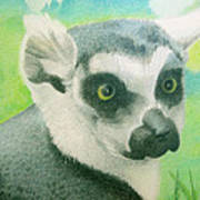 Mystic Seer Of Madagascar Poster