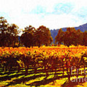 Napa Valley Vineyard In Autumn Colors 2 Poster by Wingsdomain Art and Photography