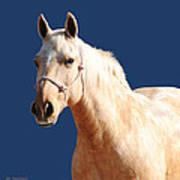 Natural Blonde Poster