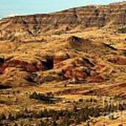 Naturally Painted Hills Poster