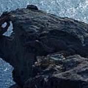 nature Protecter Santorini Island Poster