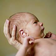 Newborn Baby Poster