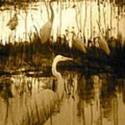 Ninigret Pond Poster