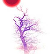 Nippon Sunset 2 Poster