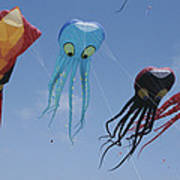 Octopus And Squid-shaped Kites Fly Poster by Stephen Sharnoff