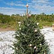 Oh Christmas Tree Florida Style Poster