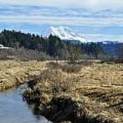 Ohop Valley View Of Rainier Poster