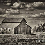 Old Barn After The Storm Black And White Poster