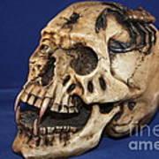 Old Bone's Skull On Blue Cloth Poster