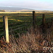 Old Fence And Landscape At Point Reyes California . 7d9968 Poster