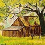 Old Florida Farm Shed Poster by Bill Hubbard