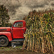 Old Ford Truck Poster by Pat Abbott