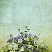 Old Grunge Paper Flowers Pattern Poster