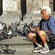 Old Man With Doves Poster