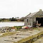 Old Shed By The Sea Poster