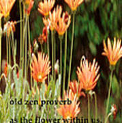 Old Zen Proverb Poster