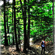 On Our Way Chasing The Eternal Flame At Chestnut Ridge Park Poster