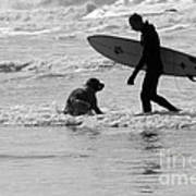 One Surfer And His Dog Poster