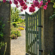 Open Garden Gate With Roses Poster