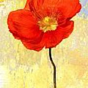 Orange Iceland Poppy On Yellow And Blue Poster