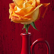 Orange Rose In Red Pitcher Poster