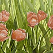 Orange Tulips Poster