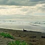 Oregon Coast 17 Poster