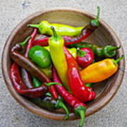 Organic Colorful Peppers Poster