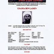 Osama Bin Laden, Militant Islamist Poster by Everett